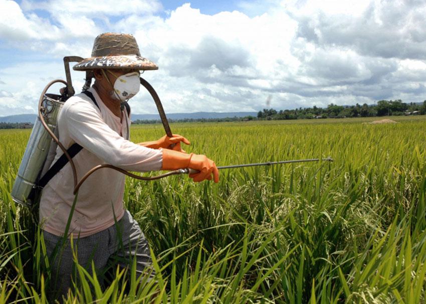 Πιστοποιήσεις Αγροτών